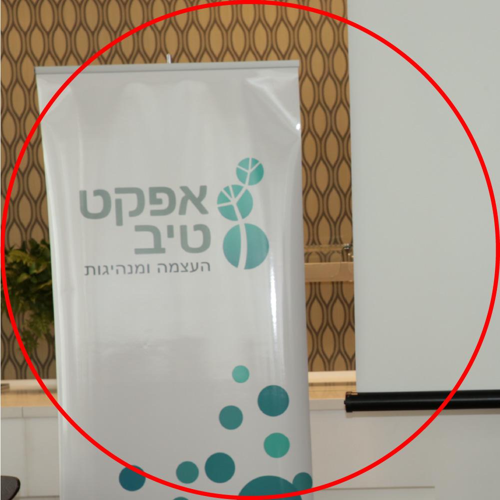 אפקט-טיב העצמה ומנהיגות רולאפ לוגו