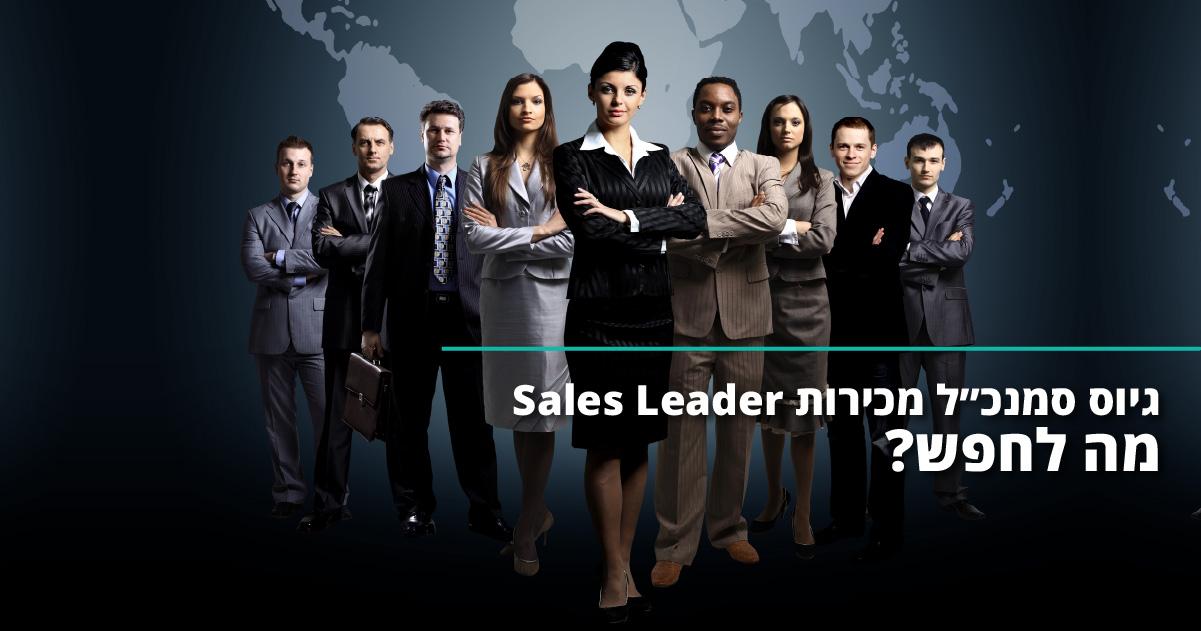 גיוס סמנכ״ל מכירות Sales Leader – מה לחפש?